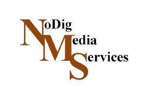 logo_nms